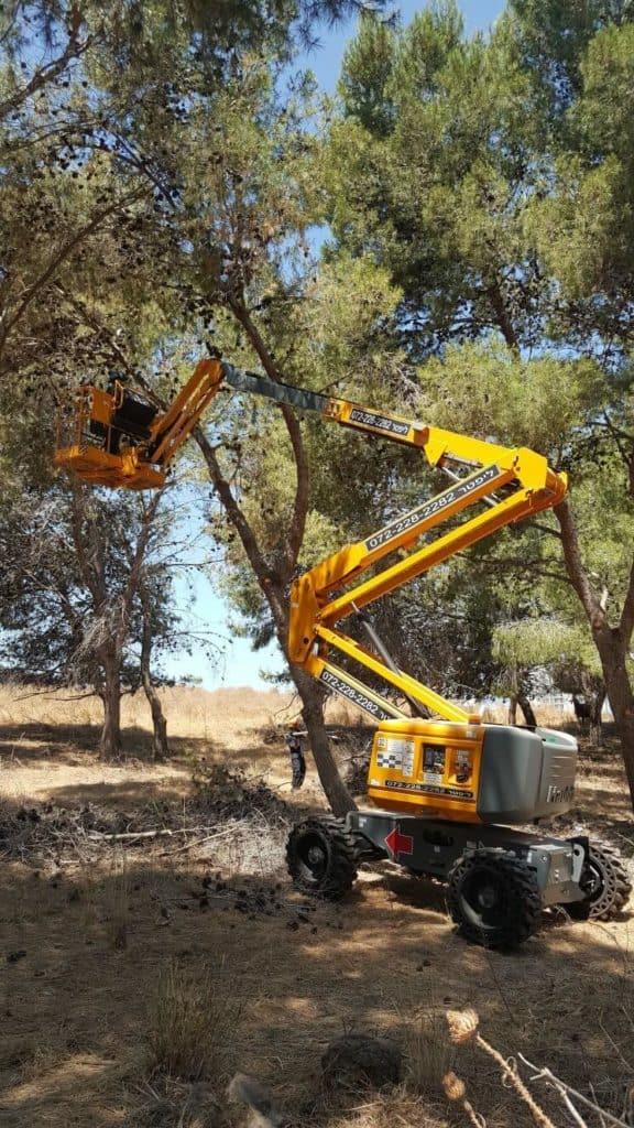 במה מפרקית 4X4 בצבע צהוב, עבודת חוץ ליד עצים